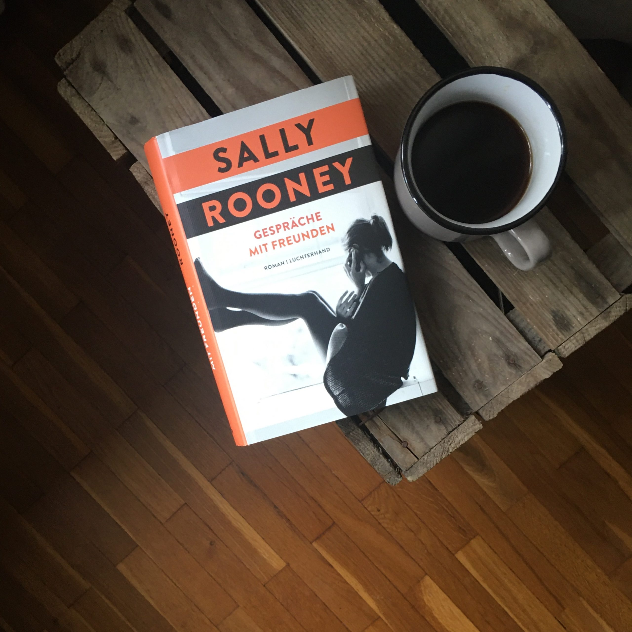 Sally Rooney - Gespräche mit Freunden